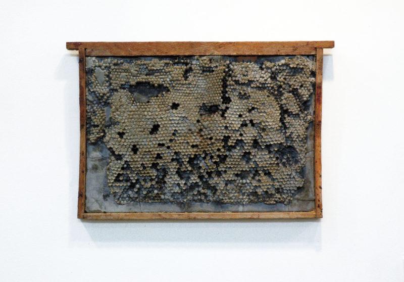 Niukaslo galerijoje VANE – pirmoji menininko Andriaus Ermino personalinė paroda Jungtinėje Karalystėje