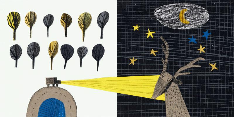 Bolonijos vaikų knygų mugės efektas