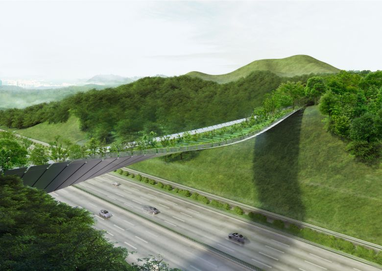 KILD_IN_Eco Bridge