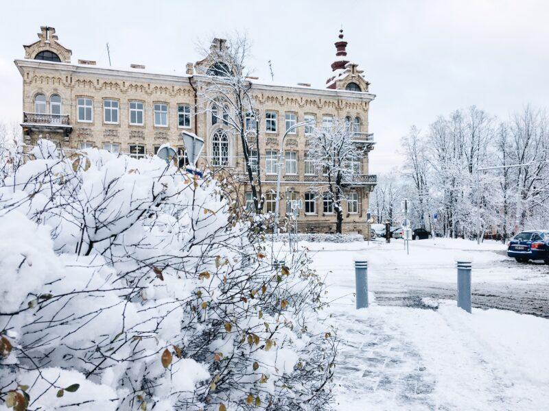 Lietuvos kultūros institutas ieško pastiprinimo!